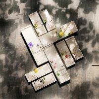 academie_aromatherapie